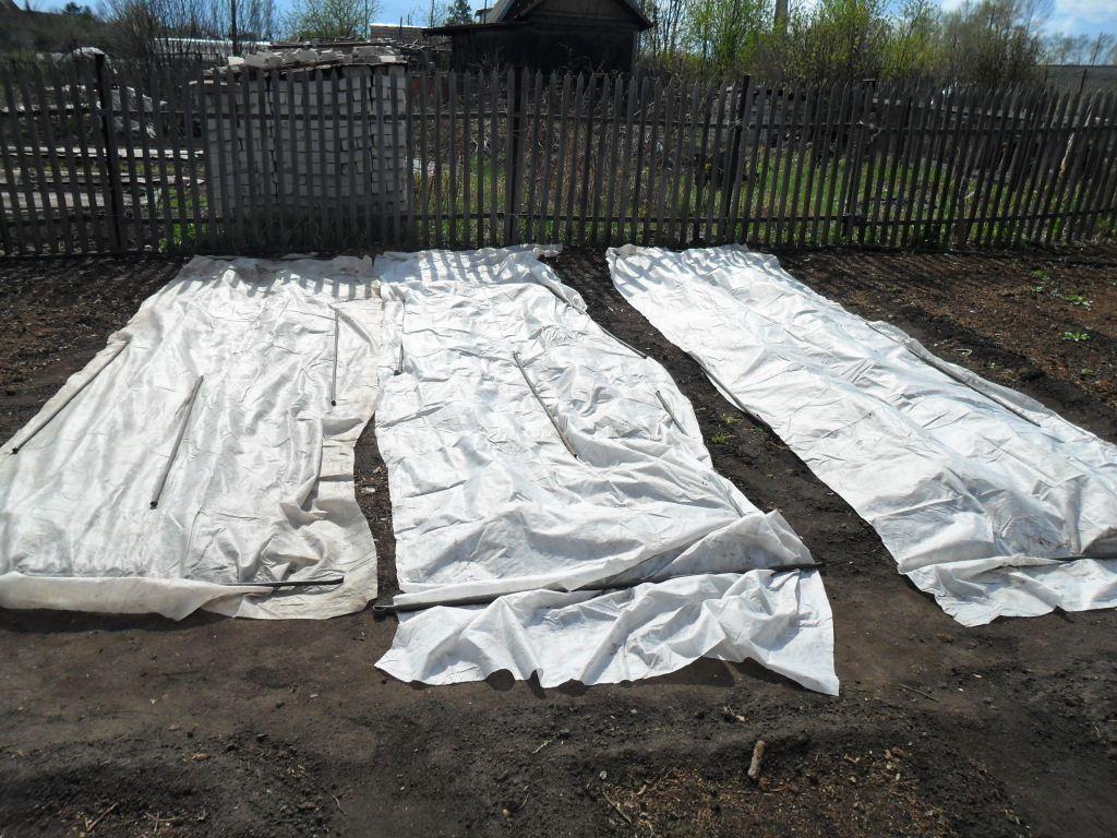 посев укрыт агроволокном
